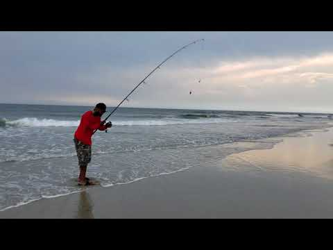 How to hook a Sand Crab / Sand Flea!