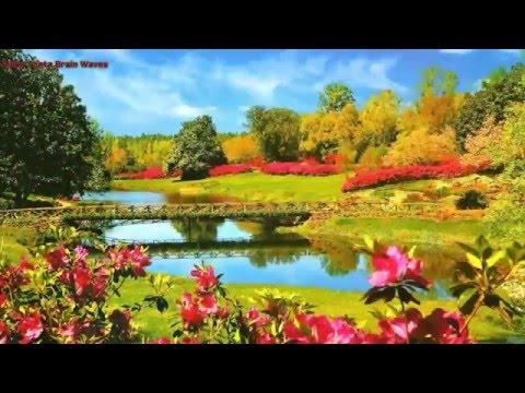 Charisma Enhancement   Seven Chakras Activation, Meditation Music To Enhance Charisma.