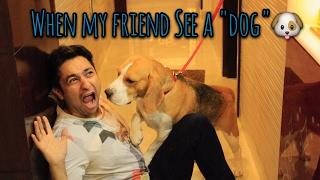Me vs My Friend When We See a DOG.    Harsh Beniwal