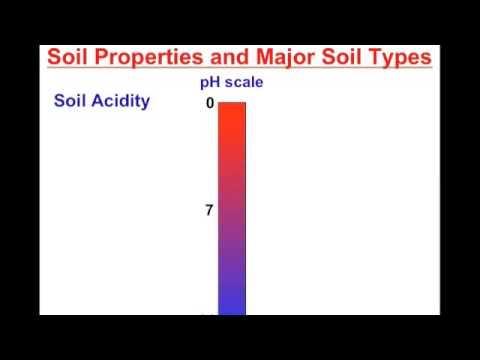 Soil Resources II