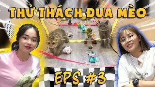 Thử thách đua mèo cùng MÍU VÀ SOFI |ThyLinh'sShow| TẬP 03