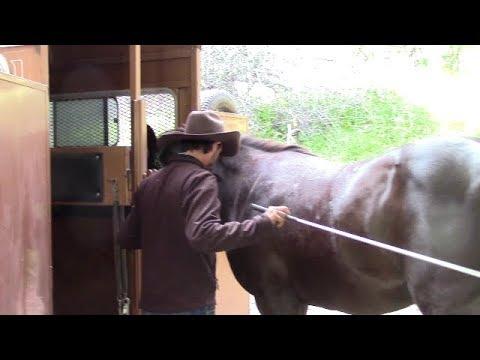 Refreshing Trailer Loading, Mike Hughes, Auburn California