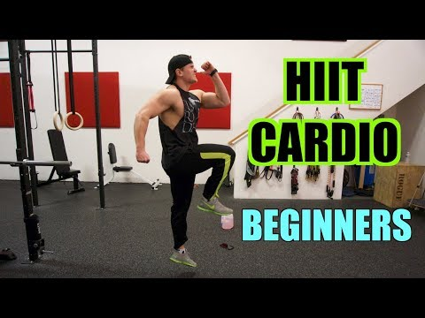HIIT Cardio Circuit for BEGINNERS | HIIT Workout #1 | Men AND Women!