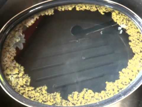 the tear film lipid layer.mov