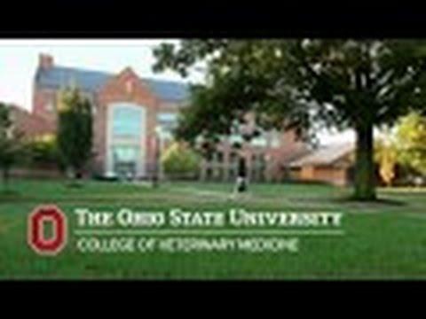 Ohio State College of Veterinary Medicine