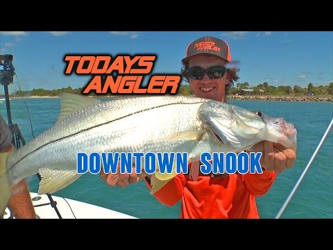 Livebait Fishing For Snook - Todays Angler