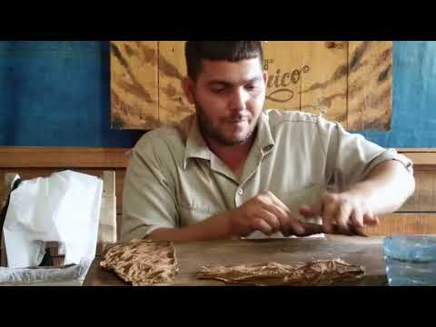 How to make a Cuban Cigar