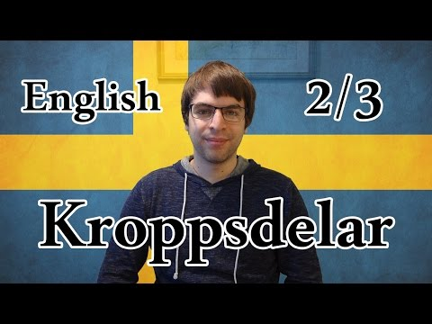 Learn Swedish | Body Parts 2/3 | Lesson 25