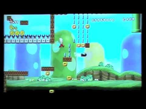 New Super Mario Bros Wii Custom Level