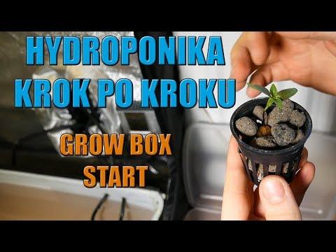 Hydroponika krok po kroku #2  GROW BOX Start