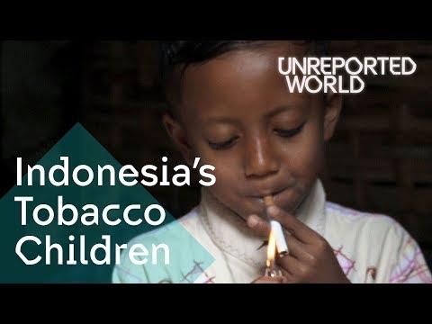 Xxx Mp4 Indonesia 39 S Tobacco Children Unreported World 3gp Sex