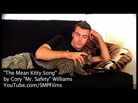 The Mean Kitty Song in HD!!!