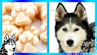 How To Make Homemade Diy Frosty Paws Abc News Snacks With The Snow Do