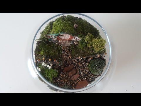 How to make a Hobbit House Terrarium