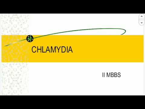 About CHALMYDIA