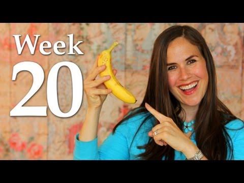 My Pregnancy @ 20 Weeks + Ultrasound Info