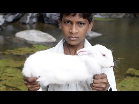 Small Boy Caught Rabbit | Rabbit Roast Recipe | Rabbit Roast Recipe in Tamil