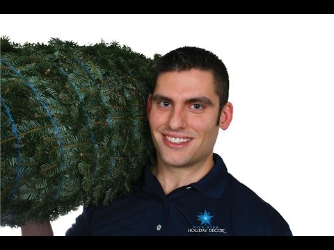 Five Star Christmas Tree Co. - Home Delivered Christmas Trees