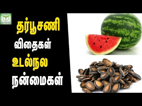 Watermelon Seeds Health Benefits - Summer Foods || Tamil Health Tips