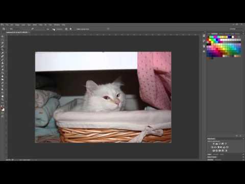 Straighten Tool in Photoshop