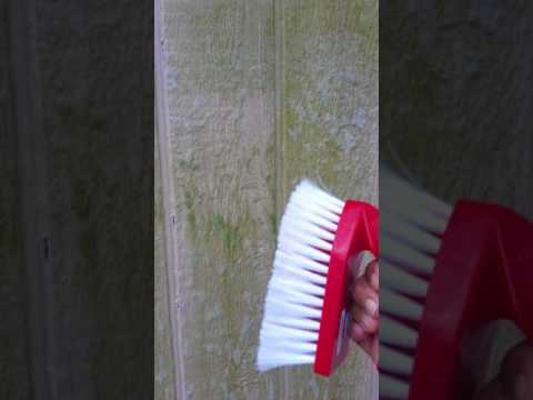 Remove Mildew from walls, decks and patios.