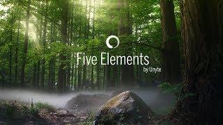 Unyte Five Elements Journey Demo