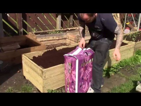 Building a Raised Bed from Decking Boards