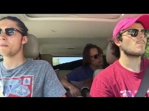 The Cluster Flies - Waves (Acoustic in the Car)