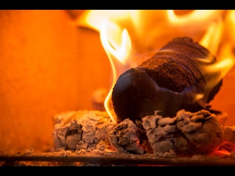 New ground in bio-fuel: logs made from coffee