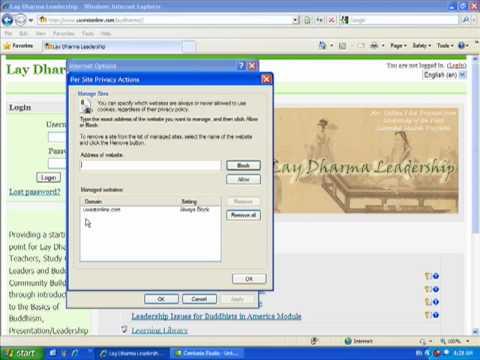 Cookies in Internet Explorer 7/8