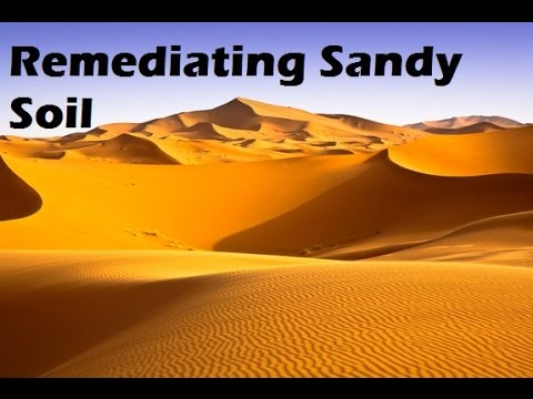 How I fixed my Sandy Soil.