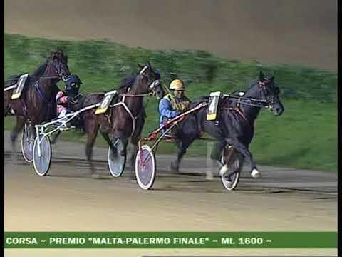 VIII CORSA Premio MALTA PALERMO FINALE   2