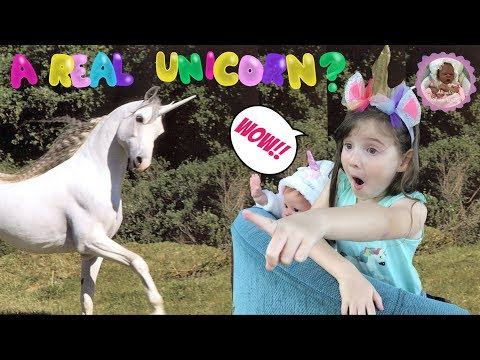 IS THAT A REAL UNICORN?? Theme Thursday - UNICORNS!!