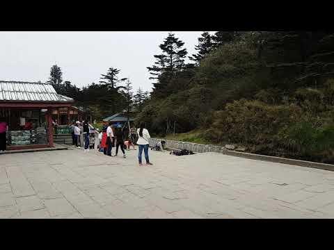 Devout Buddhists on Mount Emei Shan China