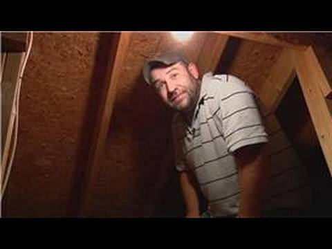Pest Control : How to Get Rid of Wasps in the Attic