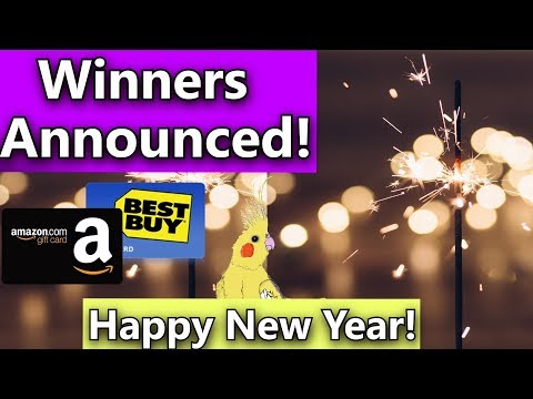 Winners announced! Amazon and Best Buy Gift Card Winners!  Happy New Year!