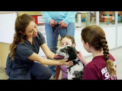 Petco Veterinary Services (Petco)
