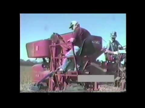 Combine Mounted Grain Cleaner