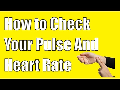 How to Check Your Pulse - A Complete guide To Check Your Heart Rate  And Pulse Rate
