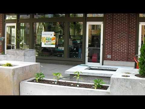 Neo Burrito | Asheville Biltmore Park