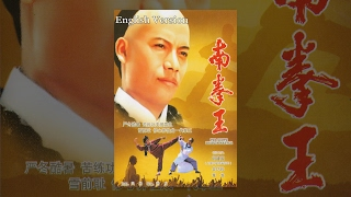The South Shaolin Master A Kungfu Film English Version