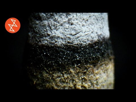Micro ASMR: Incense   Macro Video of Incense