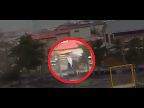 During Japan Tsunami a strange creature was caught on camera - real footage