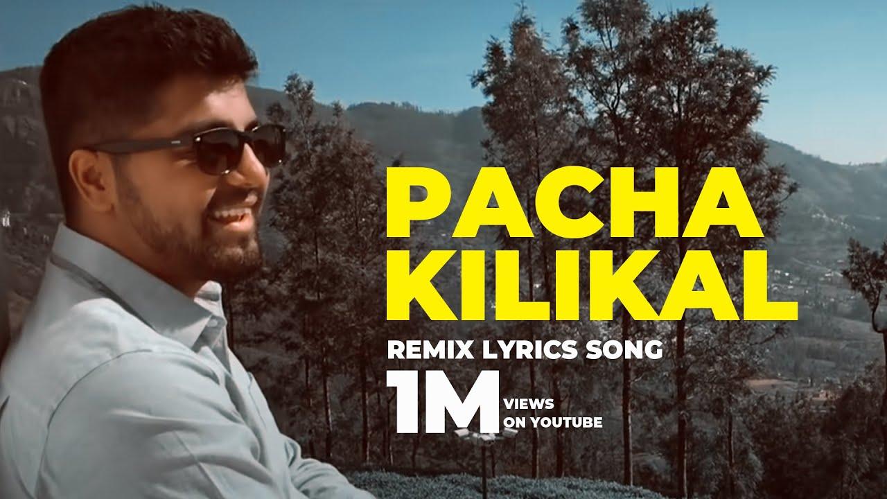 Download Pachai Kiligal Lyric Remix - Aditya Rao Dr. Srimix   A.R. Rahman - Indian MP3 Gratis