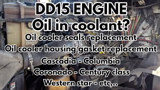 Freightliner cascadia DD13 DD15 DD16 SPN 5444 FMI 1 Bad crankcase