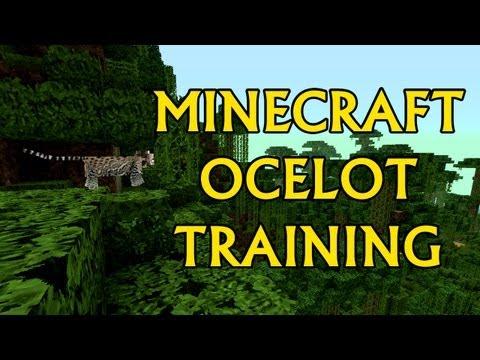 Minecraft Ocelot Taming!