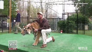 Why Has Tiger King Become a Pop Culture Phenom? | The View