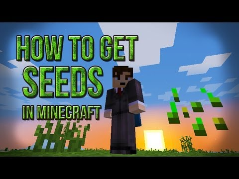 How To Get Seeds In Minecraft