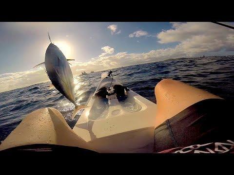 Chasing Dinner // Racing Ski Fishing