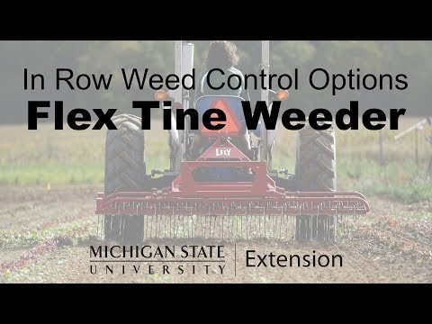 Flex Tine Cultivator - In Row Weed Control Options